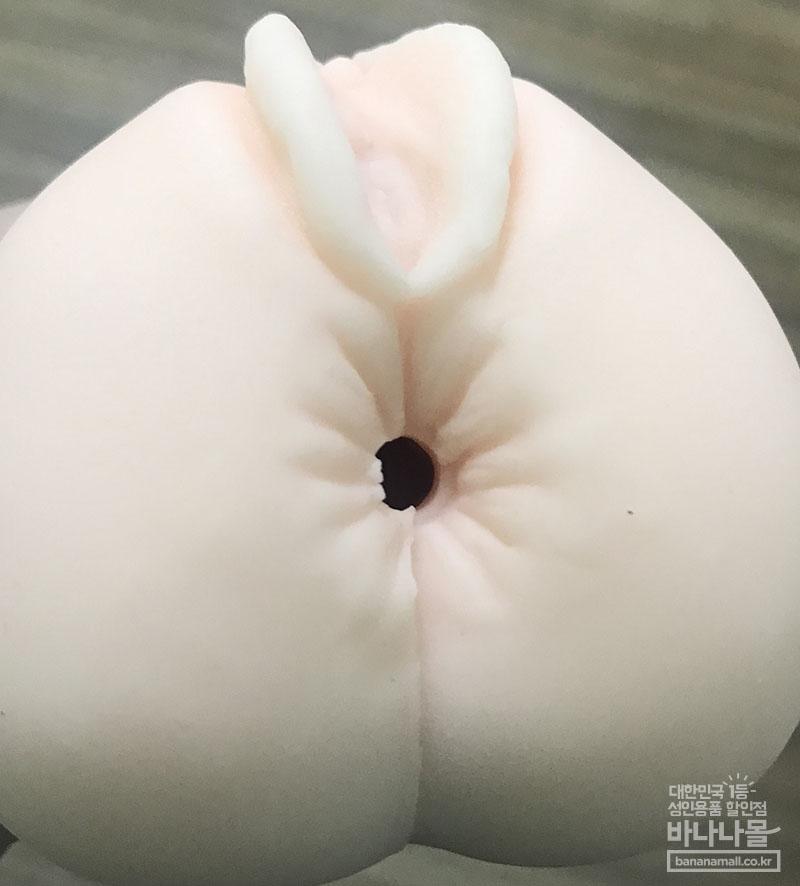 성도회장 후기