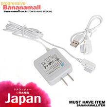 [일본 직수입] 리튬 충전을 위한 충전기(リチウムチャージ用充電器) (WCK)